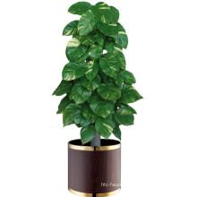 Hotel Lobby Flowerpot Wooden Planter/Flowerpot Stand