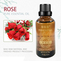 Luxury Aroma Body Essential  Oil