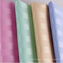 1cm Stripe cortina de chuveiro para o banheiro do hotel (DPH9201)