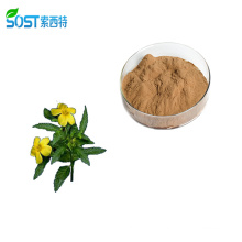 SOST Best Selling Wholesale Damiana Herbs Leaf Extract Powder