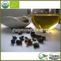 Orgánica certificada Taiwán Camellia Gaba Oolong té
