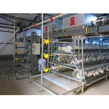 High Quality A Style of Layer Cage