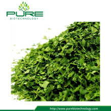 Moringa Oleifera Dried Leaves