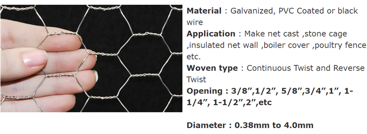 Hexagonal Wire Mesh x