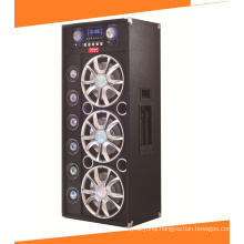 12 Inch Karaoke Audio Powered DJ Speaker A13