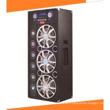 12-дюймовый караоке Audio Powered диктор диктора A13