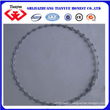 Electro Galvanized Razor Wire (TYB-0052)