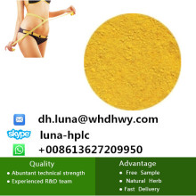 Fat Loss Powder 2, 4-Dinitrophenolate / 2, 4-Dinitrophenol DNP CAS 51-28-5