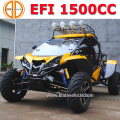 1500cc 4x4 Beach Buggy for Renli Ourtdoor Sports sales