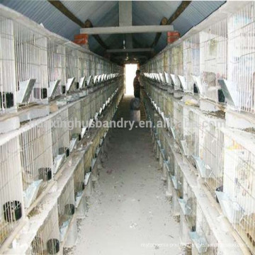 new design rabbit cage /welded rabbit cage wire mesh