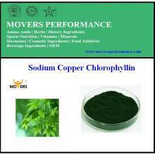 Qualité supérieure Nature Chlorophylline à base de sodium