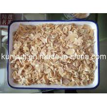 Conservas de cogumelos P & S com alta qualidade