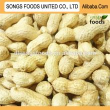 Großhandel Erdnüsse Inshell