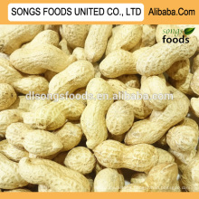 Wholesale Peanuts Inshell