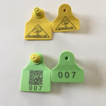Professional for Icar Cattle Ear Tag ear tag for pig ear tag export to Wallis And Futuna Islands Factories
