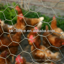 3/8 inch Hot dipped Galvanized hexagonal Poultry wire netting