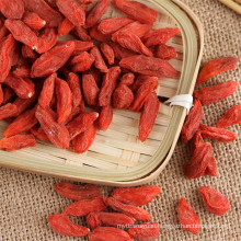 Saludable alimento bayas de goji berry