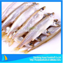 fresh frozen pond smelt seafood for sale
