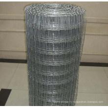 Clôture de bovins à nœud en acier galvanisé à électro-éperon (anjia-530)