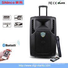 10 12 15 Inch Portable Wireless Bluetooth Stereo Active Speaker
