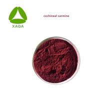Poudre de carmin de cochenille de pigment naturel d'agent de couleur
