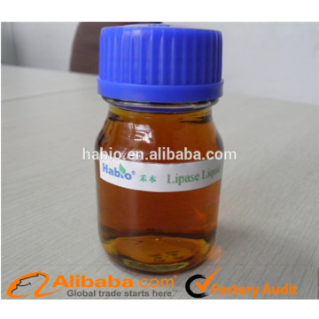 Excellent Biodiesel Specialized Lipase