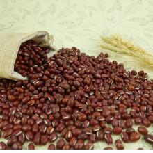 Vente en gros chinois organique Sweet Adzuki grains de sucre Prix par tonne