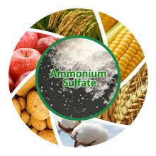 Fertilizante (NH4) 2so4 Granulado Sulfato de Amónio / Sulfato de Amónio