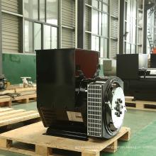 Богоподобный Бренд трехфазный генератор переменного тока Бесстыжие (JDG274)