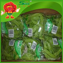 IQF preço de ervilhas verdes (ervilhas de neve congeladas) vagens de ervilha instantânea