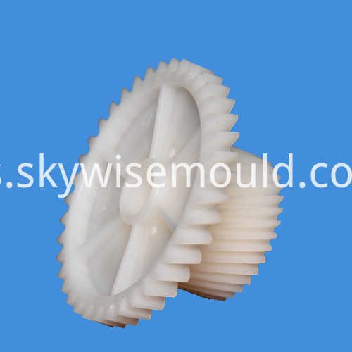 Plastic Injection Worm Wheel Mould