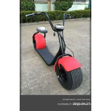 Nouveau scooter électrique de ville avec moteur sans balai de 800 W