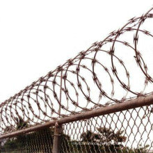 High Security Galvanized Razor Wire Using in Border Fence