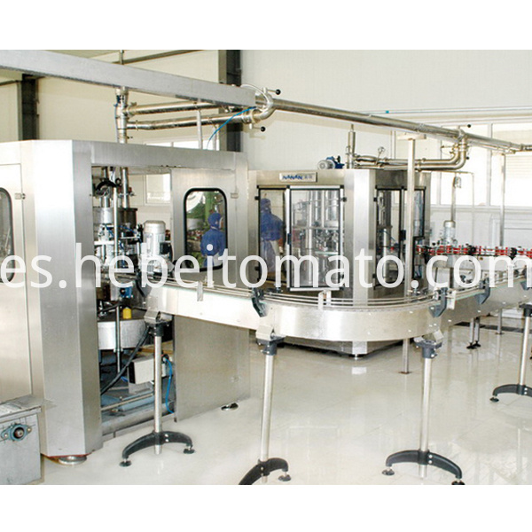 tomato paste Factory-Hebei Tomato