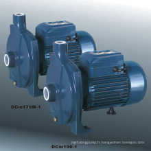 Pompe à eau centrifuge (DCm)