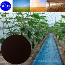 EDDHA Fe 6% for Organic Fertilizer Organic Agriculture