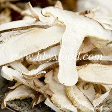 Fatias / quartos secos congelados do cogumelo de Shiitake