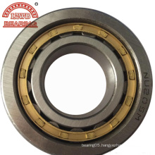 Stable Quality Competitive Price Cylinder Roller Bearing (NU205)