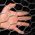 Высокого Качества Горячее Окунутое Гальванизированное Шестиугольное Плетение Мелкоячеистой Сетки