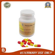 Medicamentos Veterinários da Cápsula de Tetraciclina (250mg)