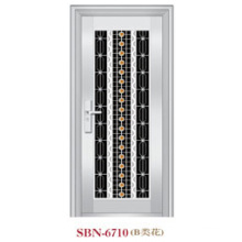 Stainless Steel Door for Outside Sunshine (SBN-6710)