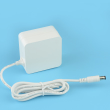 12V 2A Foldable US Plug Mini Power Adapter