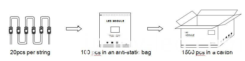 back lighting module