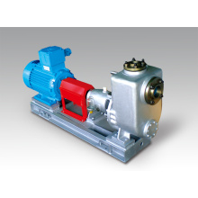 Electric Stainless Steel Horizontal Chemical Self Priming Pump