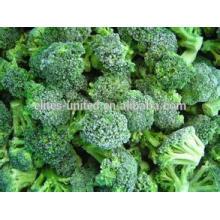 Flores de brócolis iqf