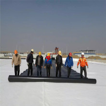 Spunbond A6 Nonwoven Geotextile Cushion Layer