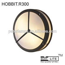 outdoor LED wall light ceilling security lighting IP54 20W CE China supplier