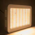 2020 Best Selling Led Lights 1000w élèvent des lumières