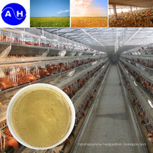 Poultry Feed Addtive Chromium Amino Acid Chelate
