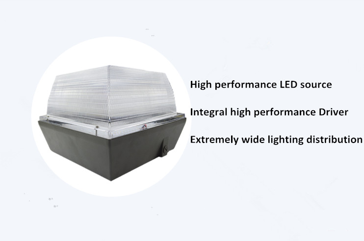 Led Canopy Light Dlc